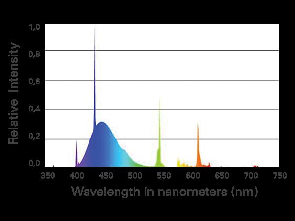 Coral Plus bulb chart