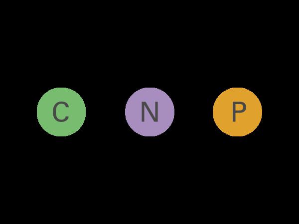 c-n-p