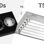 LEDs versus T5s