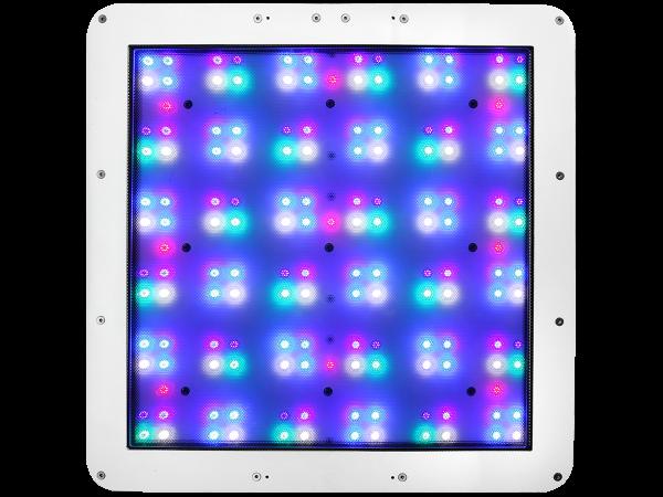 Straton LEDs