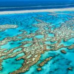 Fun Facts about Coral Reefs