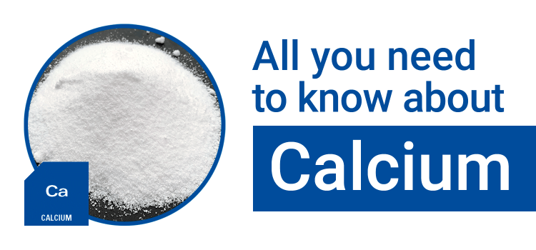 All You Need to Know About: Calcium