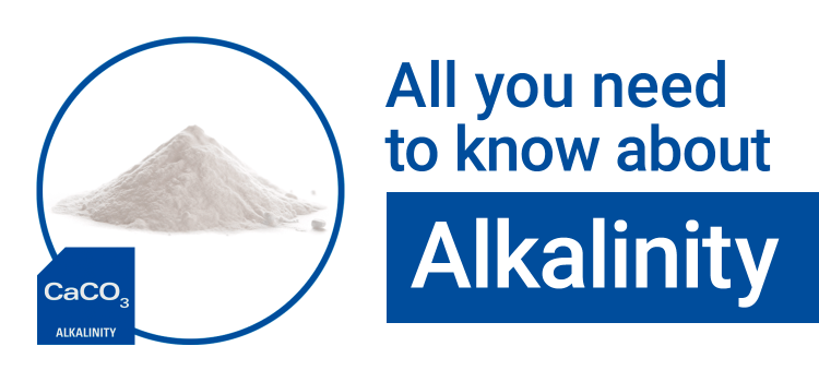 All You Need to Know About: Alkalinity